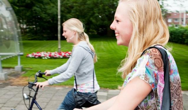 Gemiddeld gaat een reismaatje acht tot tien keer met de deelneemster op pad, meestal één keer per week. Foto: MEE IJsseloevers.