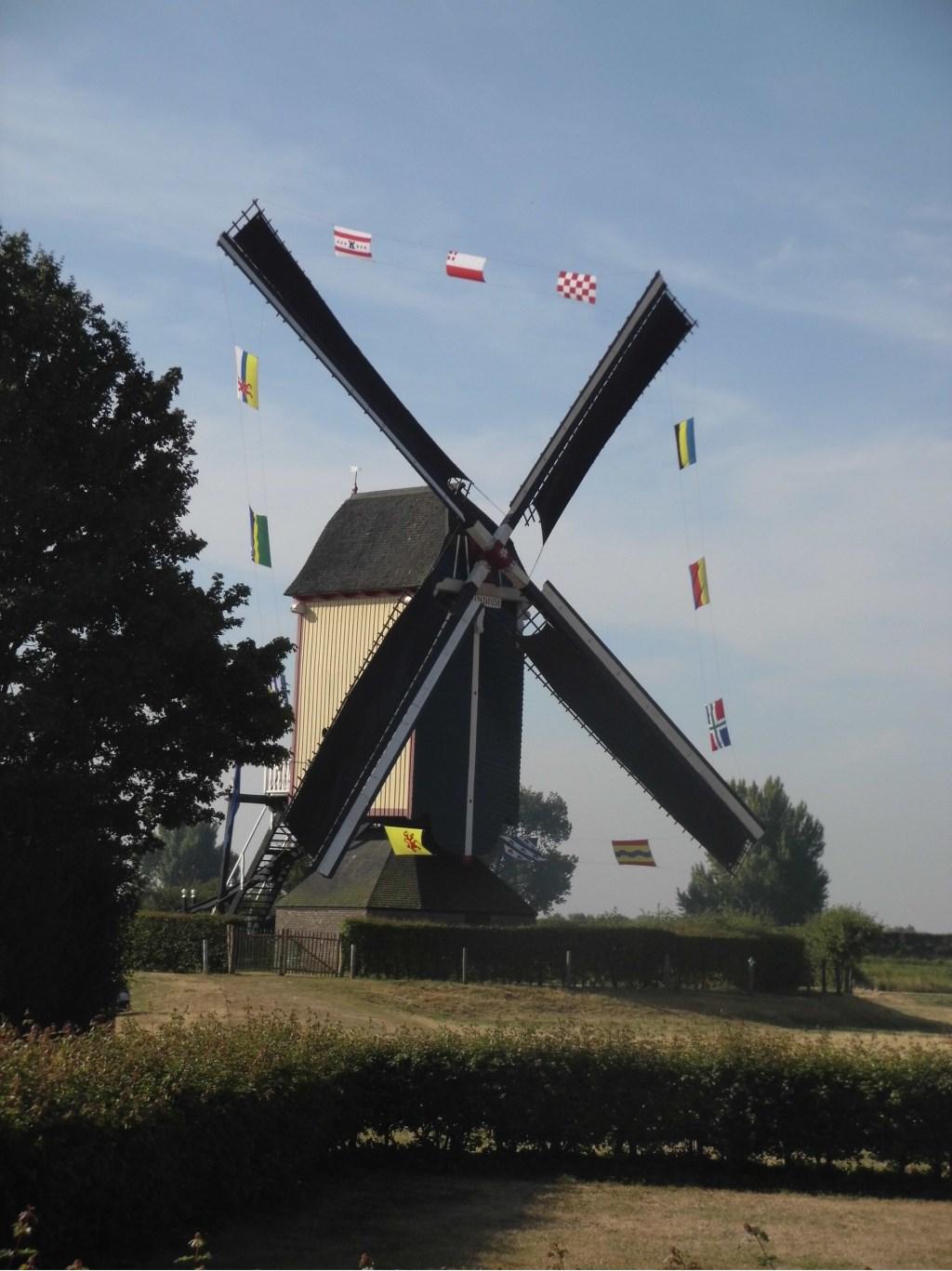 Versierde molen bij Dommelsvoort op de vierde dag.  © Persgroep