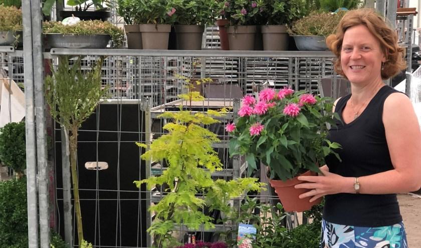 """Mevr. Bierhuis uit Boskoop was heel blij met o.a. de mooie pluimhortensia. """"Een plant om te knuffelen"""", reageerde zij enthousiast."""