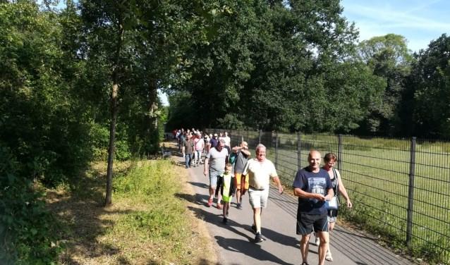 De deelnemende wandelaars werden begeleid door fysiotherapeuten en familieleden