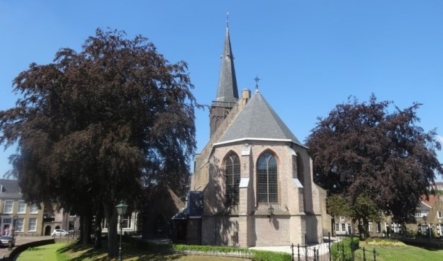 """Ook het centrum van Ridderkerk heeft behoorlijk wat """"Stadsnatuur'Foto: PR"""