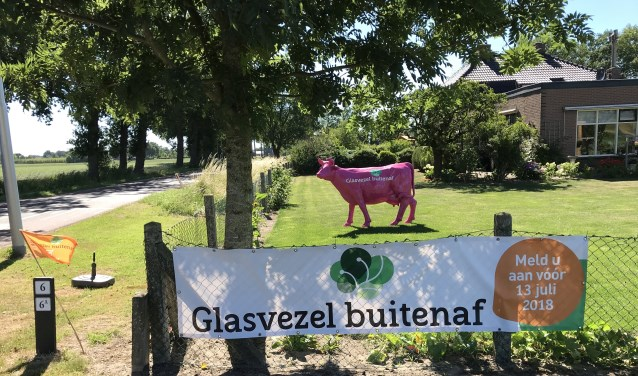 In het buitengebied van Ede, Bennekom, Wageningen, Doorwerth en Rhenen zie je steeds meer oranje vlaggetjes.