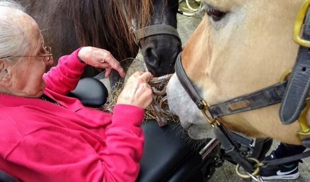 Mevrouw die met haar 92 jaar nog eens graag naar de paarden zou willen gaan.