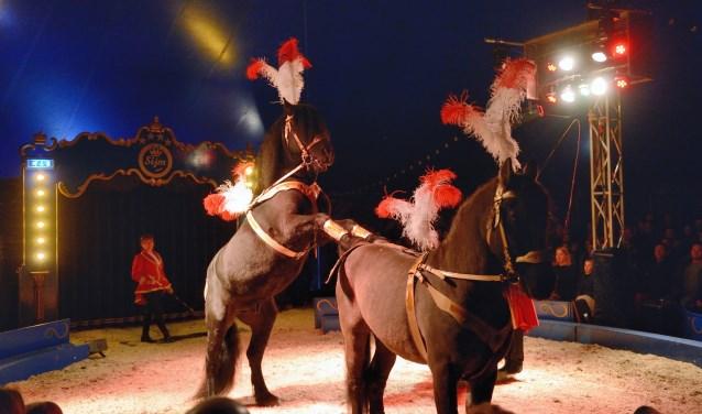 Van 10 tot en met 18 julistrijkt Circus Sijmneer in Park Transwijk in Utrecht. Foto: Ron Mikkenie
