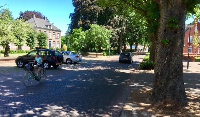 Veel inwoners van Helvoirt vinden dat in de Kastanjelaan trottoirs moeten komen waardoor deze laan veiliger wordt.