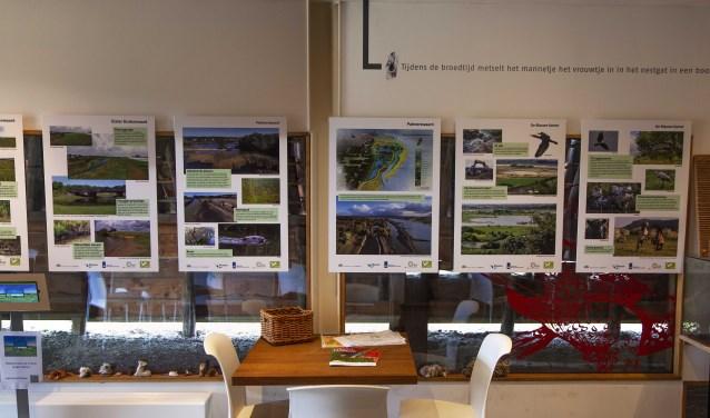 """De expositie """"Natuurontwikkeling langs de Nederrijn"""" blikt terug op het ontstaan van de natuurgebieden in de Amerongse Bovenpolder en de Blauwe Kamer en kijkt vooruit naar de op stapel staande natuurontwikkeling."""