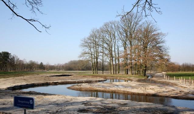 Een verdere verlaging van de waterstand is ontoelaatbaar. Foto: Theo van Sambeek
