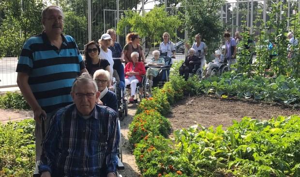 Elke woensdagochtend om 10.30 uur wandelt een groep vrijwilligers met een grote groepenthousiaste ouderen. Eigen foto