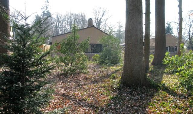 De architect wilde voor de bewoners van de Boekelose bungalows een maximum aan natuurgenot en privacy creëren.