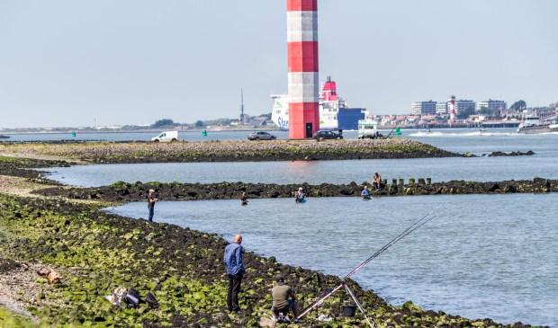 Vissers hebben niet veel last meer van de olie. Foto: Patrick Wanders