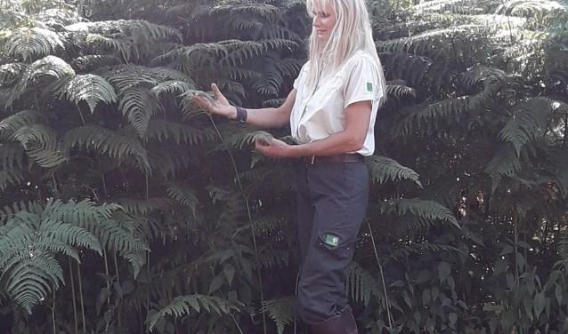 Ontdek met de boswachter de geheimen van het bos!