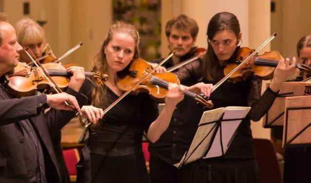 Het Cugnon Project is zowel een ontdekking voor populaire muziekliefhebbers tot de doorgewinterde klassieke muziekliefhebbers. FOTO: PR