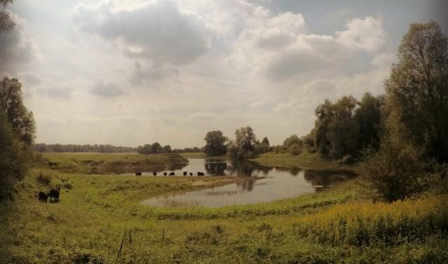 Het rivierenlandschap