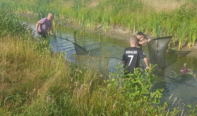 Leden GHV volop bezig met t redden van de vissen