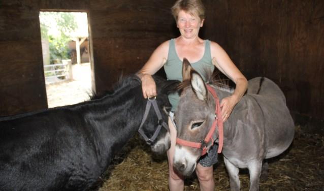 Coby Wiltink met twee van haar dertien ezels die met het warme weer een tropenrooster hebben. (Foto: Arjen Dieperink)