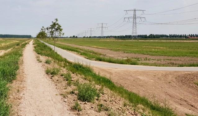 De nieuwe Dordtse Biesbosch is niet voor boten maar ideaal voor fietsers, wandelaars en ruiters. (foto: Marco van Schaardenburgh)