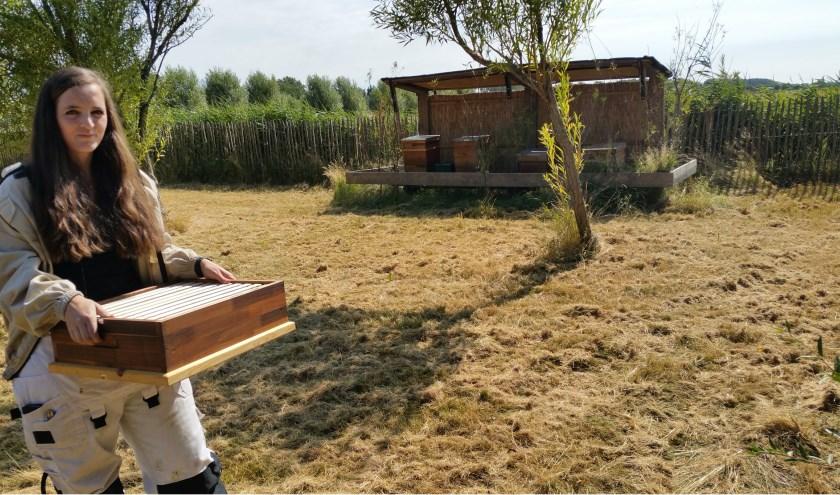 Maggy Kitslaar op weg naar haar bijenstal op Camping Ons Buiten in Oostkapelle. FOTO: THEO RIETVELD