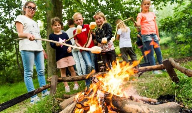De kinderen kunnen lekker bij het kampvuur hun eigen marshmallows bakken. (Foto: De Vreemde Vogel)
