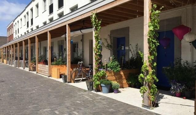 Bewoners leggen 22 september geveltuintjes en boomtuintjes aan en als ze dat willen geven zij hun tuin of balkon een opknapbeurt.