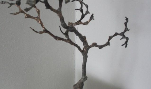 Tulpenboom