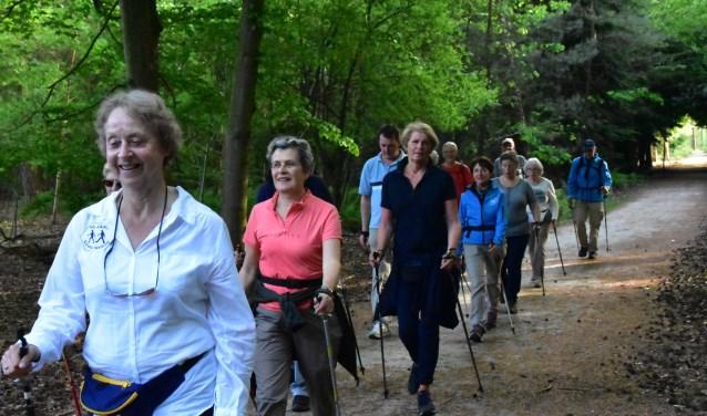 Nordic Walken in het Mastbos