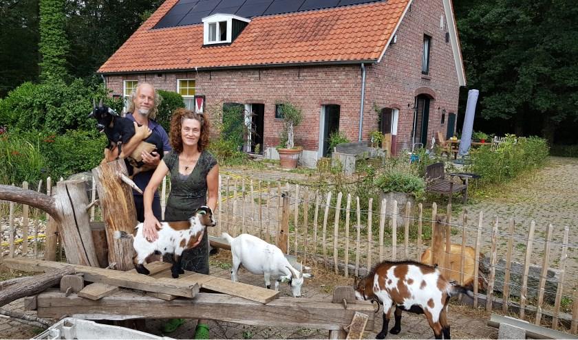 Mark Hessels en Andrea Bloem samen met de bokjes en de geitjes bij Natuurhoeve Grenslicht in het Woold. Foto: Han van de Laar