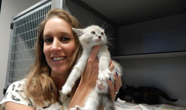 """Lindy's werk bij de stichting is afwisselend: planning maken, katten verzorgen of katten vangen. """"Als je de moederpoes eerst vangt, dan krijgen de kittens eerder trek en vang je die ook sneller."""""""