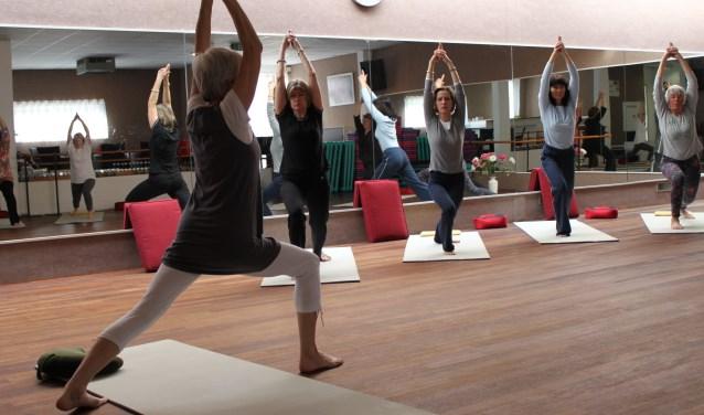 Beeld van een yogacusus van Latent Talent. (Foto: LT)