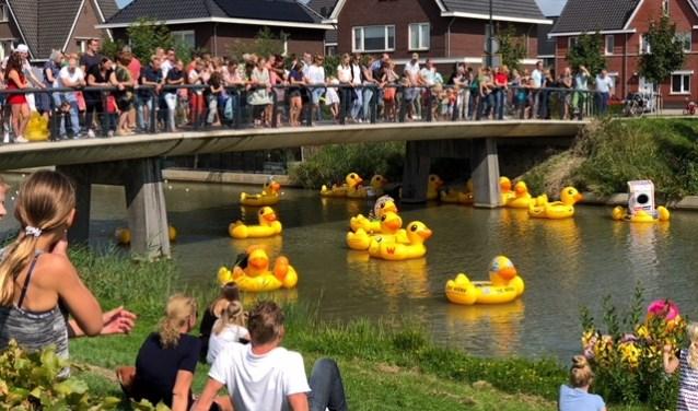 Met de Duckrace is 8.000 euro opgehaald voor de Harmonika. Zij zullen het bedrag investeren in een theetuin aan de Nieuwe Tijningen.
