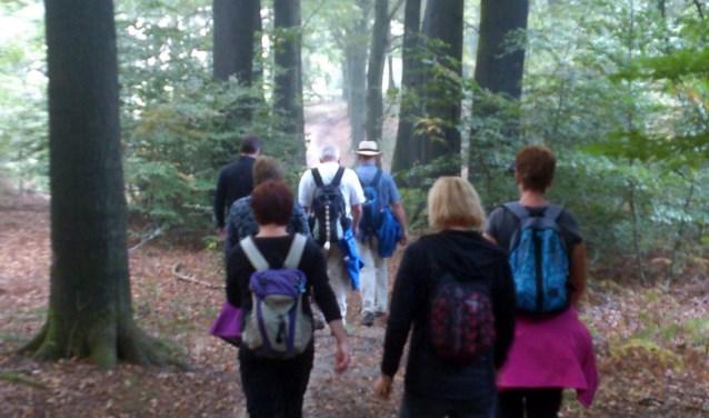 Meedoen aan een leuke wandeltocht en ook nog het goede doel steunen: dat kan tijdens de Losloperstocht.