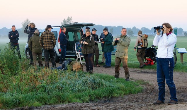 Vorig jaar werden bij de telpost aan de Havelandsweg heel veel vinken genoteerd. Foto: L. de Haan
