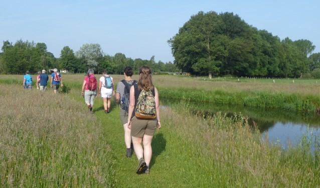 Wandelaars op pad. Zaterdag 29 september zijn er weer verrassende routes uitgezet. Foto: L. Baaijens