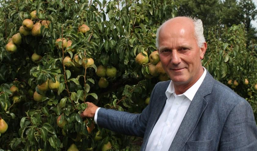 """Adrie van der Maas: 'In ons fruitteeltbedrijf is het nu topdrukte met de pluk van appels en peren. Superleuk werk."""" FOTO: Leon Janssens"""