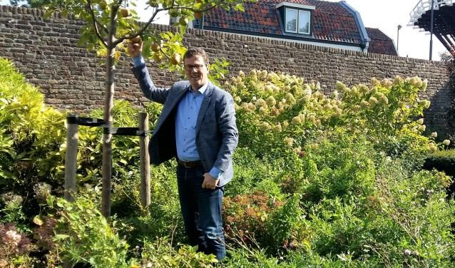 Voormalig burgemeester Patrick van den Brink plukt appels van zijn herinneringsboompje in het Molenplantsoen.