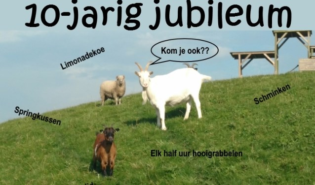 Poster open dag Dierenweide De Kraal met als achtergrond enkele van onze geiten