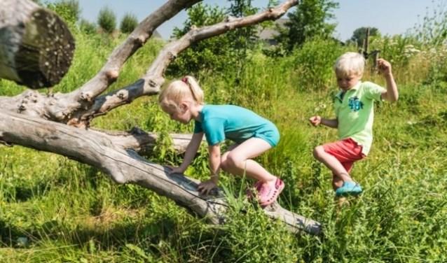 Een bruisende plek met natuurlijke elementen waar kinderen vrij kunnen spelen.