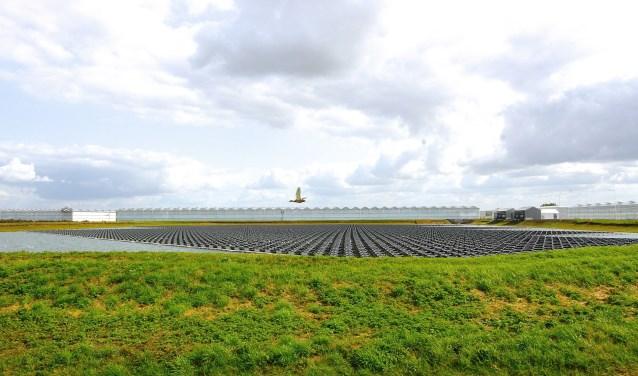Liefst 6150 zonnepanelen zijn op een bassin in Bergerden geplaatst voor het grootste zonnepark van Europa. (foto: Kirsten den Boef)