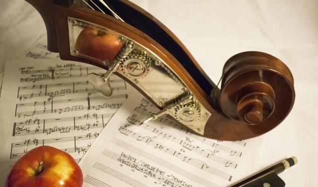 Duo-Concert Viool en Cello, vrijdag 23 februari 15:30 t/m 16:30 uur