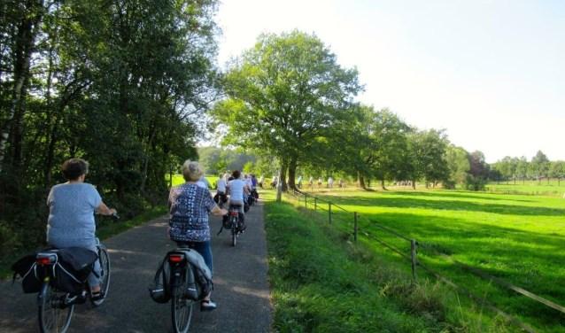 Een lang lint van fietsers van de Stichting 55+. Foto: Eva van der Struik