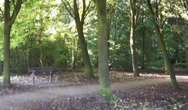 Voorbij het basketbalveldje volg je dit pad en dan zie je dit bankje. Dit zijn de plekken waar het een en ander is gebeurd.