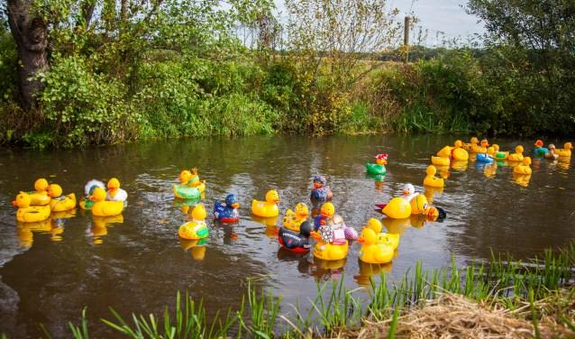 Na het succes in 2017 wordt ook dit jaar de FUNDuck race gehouden. Het is een uitbreiding op de al langer populaire Duck van ToorRace.