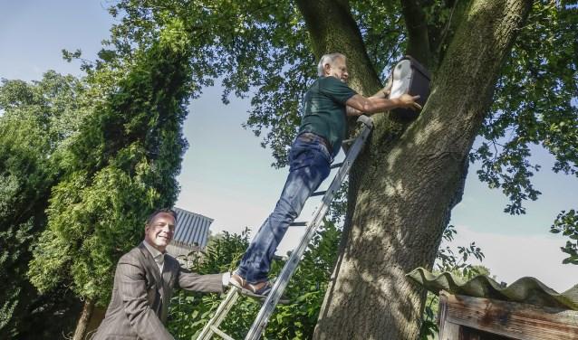 Wethouder Frank de Win (l) en Hans v.d. Eijnden installeren een nestkast. Foto: Jurgen van Hoof