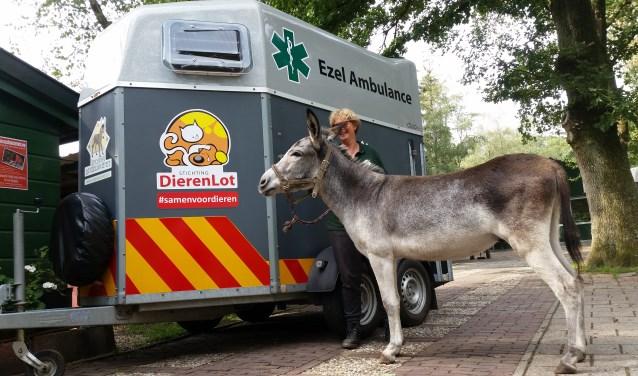 Over 2 weken laden we Joep in de nieuwe trailer die wij van Stichting Dierenlot hebben gekregen, geweldig!