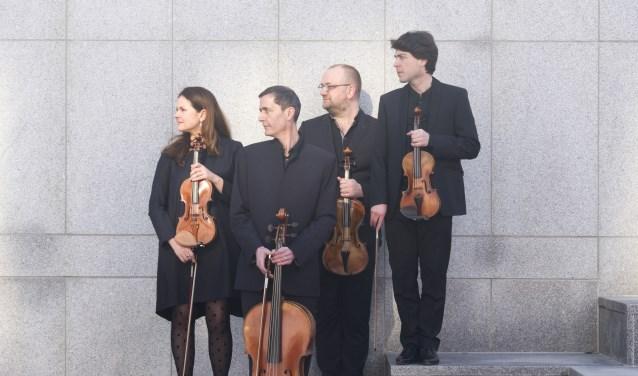 Malibran Quartet. FOTO: T Severens