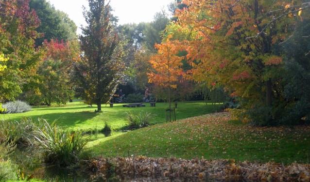 De herfst is de toptijd van het jaar. (Foto: Privé)