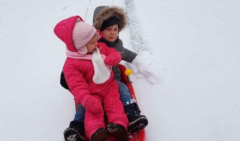Sleeën in de sneeuw. Foto: Walter Bosman.