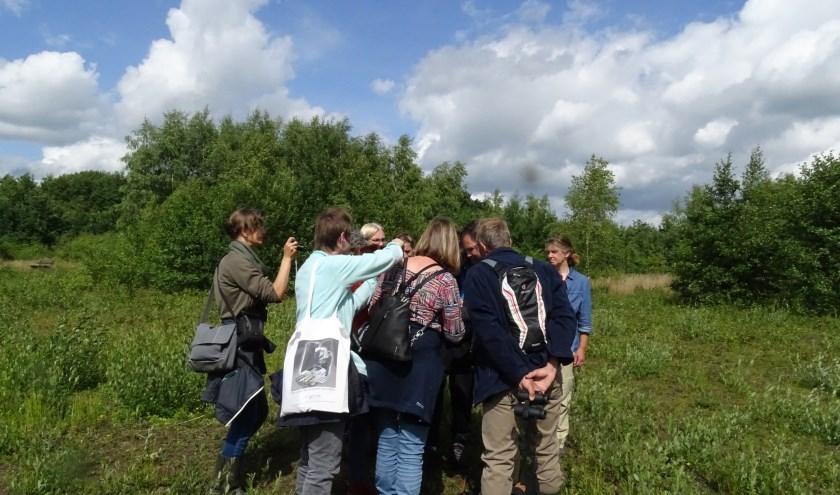 De cursus kent ook excursies in de natuur van de Kempen. FOTO: IVN