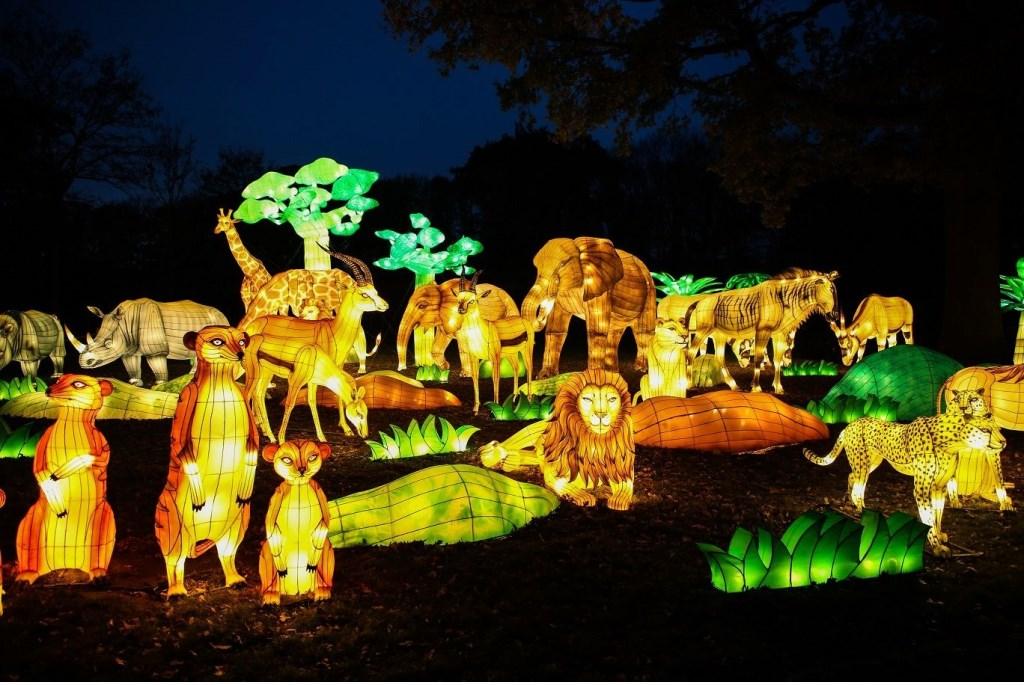 Jungle Land China Light,  © Persgroep