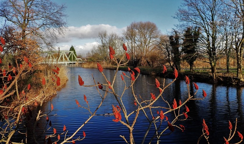 de poldervaart in winterkleuren