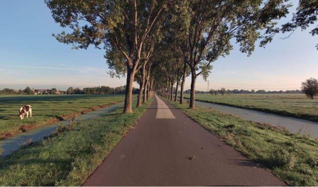 De Vlietweg in Bleskensgraaf, waar 36 bomen worden vervangen. (Foto: pr)